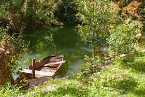Découvertes surprises pendant une visite du Parc Naturel Régional du Marais Poitevin